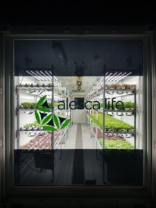 Alesca-Container-Farm-Dubai