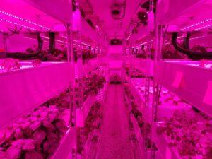 Growtainer-Farm-Interior