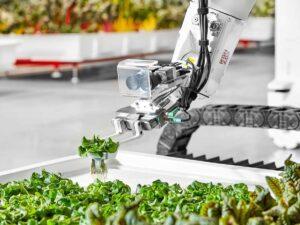 Iron-ox-robot-farming